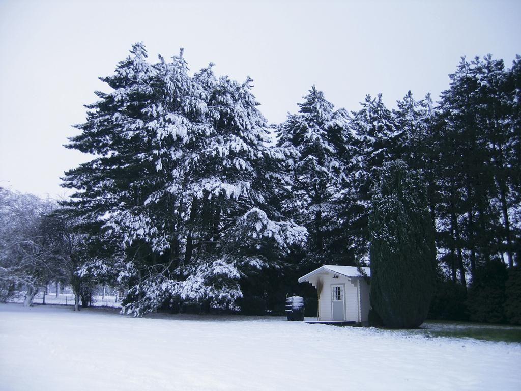 06.Sneeuw